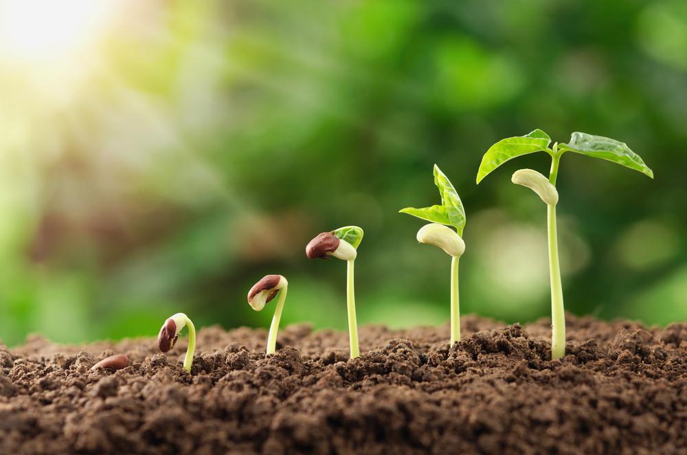 Personlig vekst og utvikling